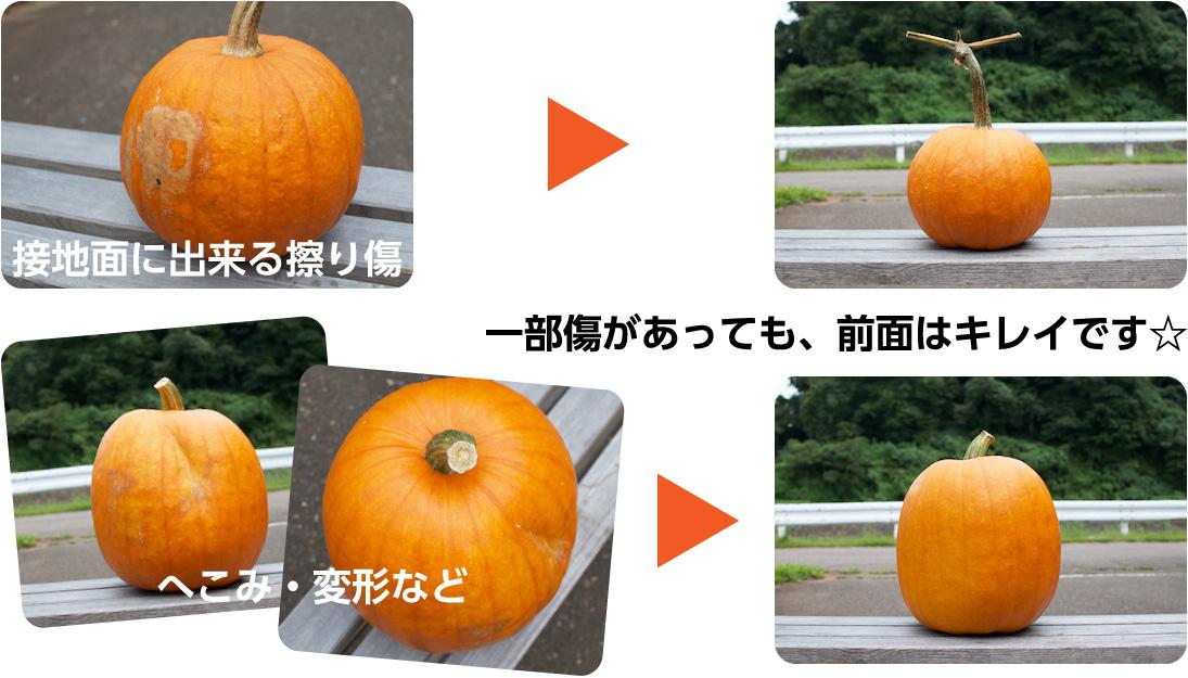 ハロウィンかぼちゃの状態について